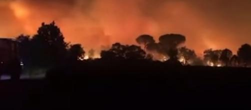 Fierce wildfires near Saint-Tropez in France force thousands to evacuate (Image source: The Telegraph/YouTube)