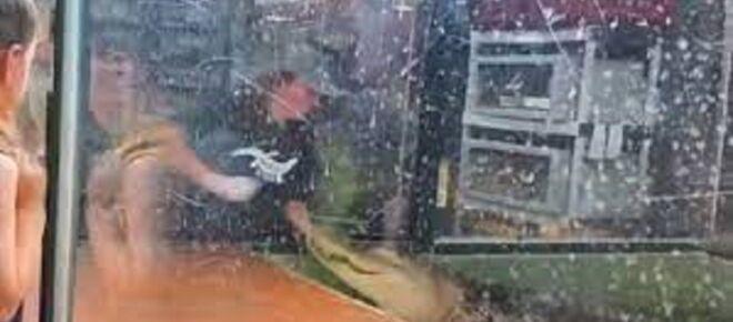 Etats-Unis : une soignante happée par un alligator s'en sort vivante et surprend la toile (vidéo)