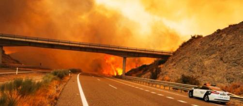 El incendio en Sierra Bermeja fue declarado desde el pasado miércoles (Twitter, guardiacivil)