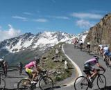 Granfondo delle Alpi Liguri: spaventoso incidente a Carcare.