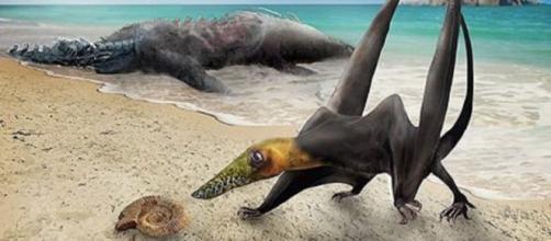 Dragón volador hallado por los paleontólogos (Universidad de Chile)