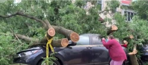 Hurricane Isaias uproots trees in Brooklyn (Image source: VOA News/YouTube)