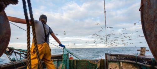 La disputa tra Francia e Gran Bretagna per la pesca nelle acque territoriali.
