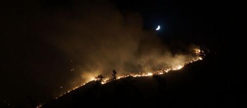 Incendios forestales en el Parque Nacional Sierra Bermeja (Flickr)
