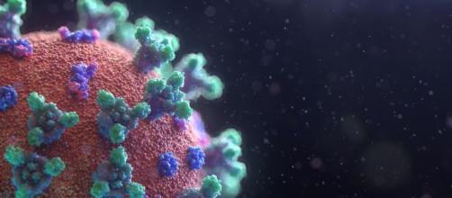 La nueva variante del coronavirus 'Mu' se asienta en Estados Unidos (Unplash)