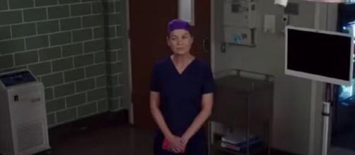 Nella season premiere di Grey's Anatomy 18, Meredith Grey incontrerà il dottor David Hamilton.
