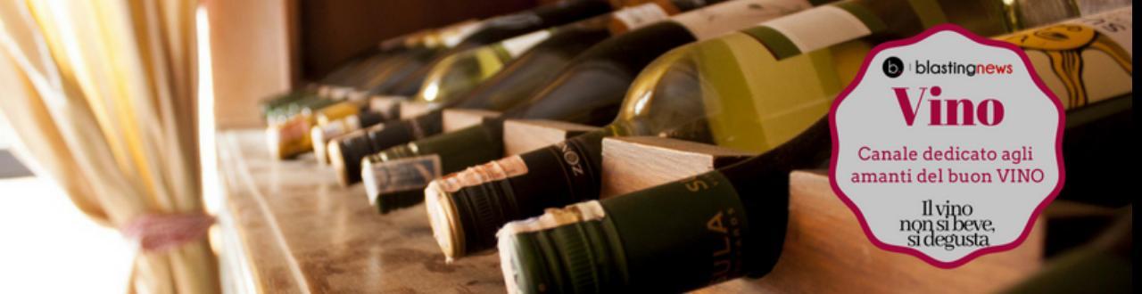 Vino: impariamo a bere e degustare questa preziosa bevanda che unisce tutti