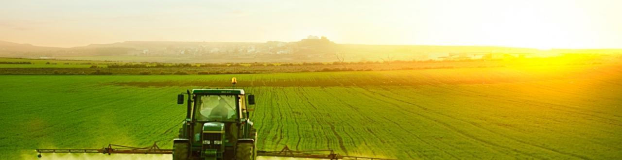 Exportação de grãos de baixo valor ainda é uma das bases da balança comercial do Brasil. Inscreva-se no canal e acompanhe as notícias!