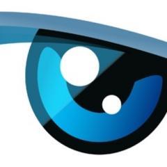 La télé-réalité Secret Story reprend les principes qui ont fait le succès de la série néerlandaise Big Brother.
