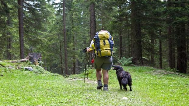 VIDEO: Soccorso Alpino: 'Salviamo persone non cani'