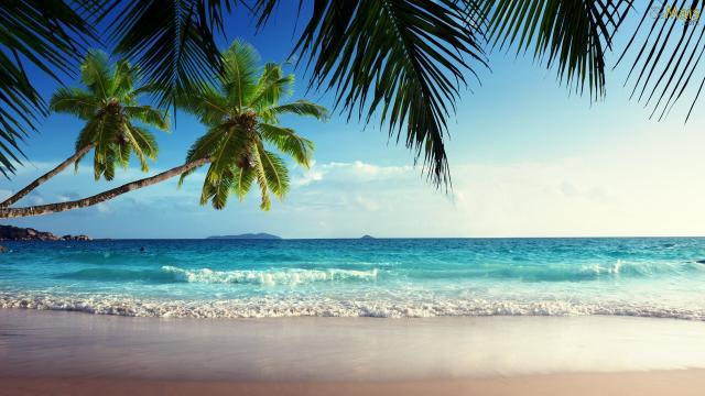 Assista: 8 situações bizarras que só acontecem nas praias brasileiras