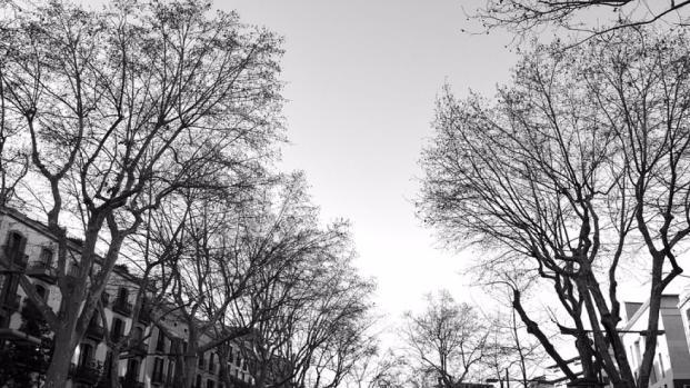 Atentado transforma Barcelona em cidade fantasma