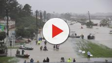 Tomi Lahren loses it in wild rant after celebrities hold hurricane relief event