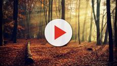 ¿De verdad el otoño nos deprime?