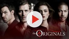 The Originals: Joseph Morgan fala da 5ª temporada 'sangrenta e dramática'