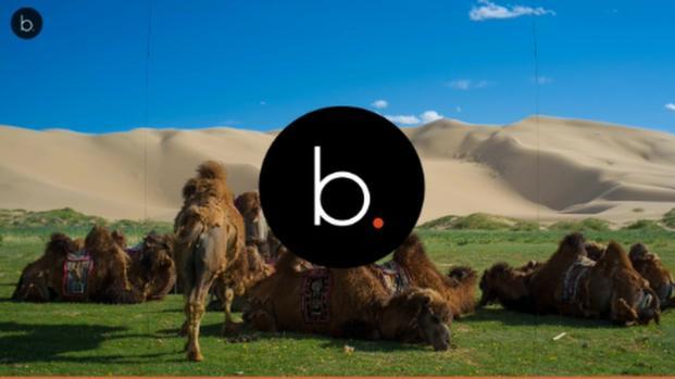 Persi nella bellezza della Mongolia