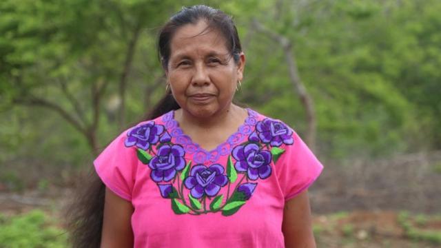 Marichuy aspira a la presidencia de México en 2018