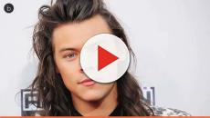 Harry Styles was sexually assaulted while performing onstage