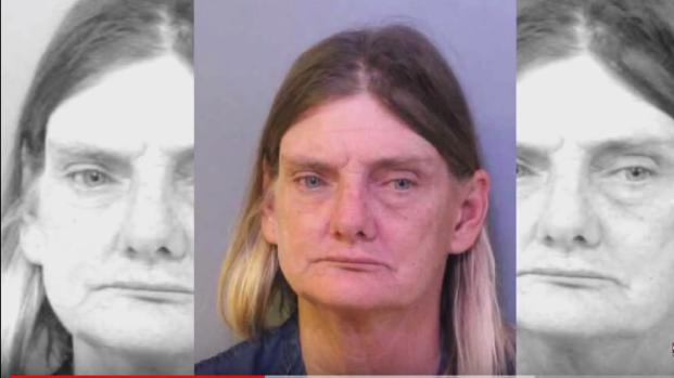 Florida woman was arrested  for 'DUI on a horse'