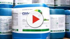 Europa e glifosato: accordo sottobanco con la Monsanto?
