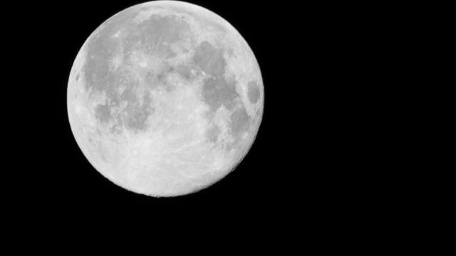 Japan reaches out to NASA, India as partners in race to the moon