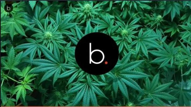 Fabri Fibra e la sua relazione con la marijuana