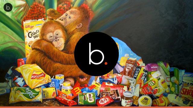 Assista: Produção de Nutella devasta florestas e mata inúmeros orangotangos