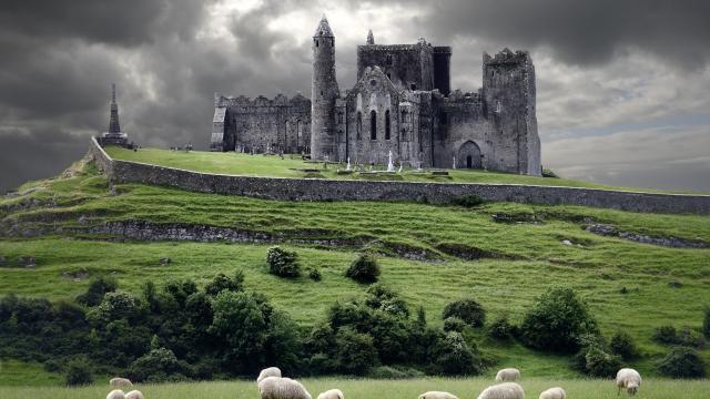 Qualtrics abre sus espacios hacia nuevos horizontes junto a Irlanda