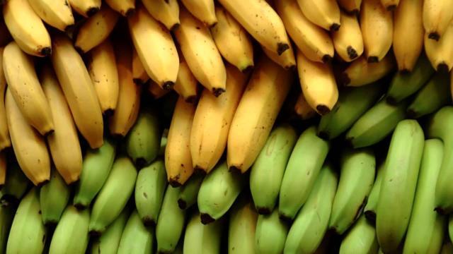Irán importará más plátanos, invertirá en PH infra y energía