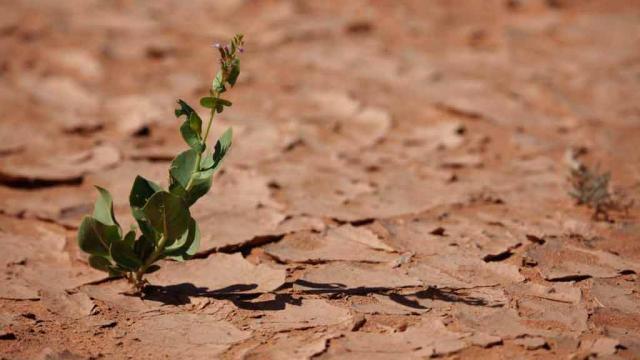 VIDEO: España tiene un proyecto de Ley de Cambio Climático para el 2018