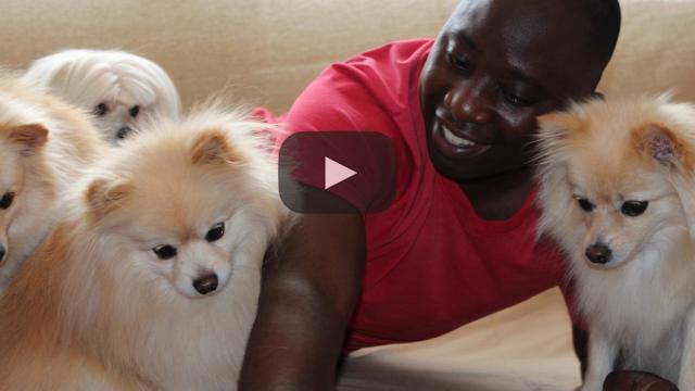 Investigación: ¿Tener un perro es bueno para tu salud?