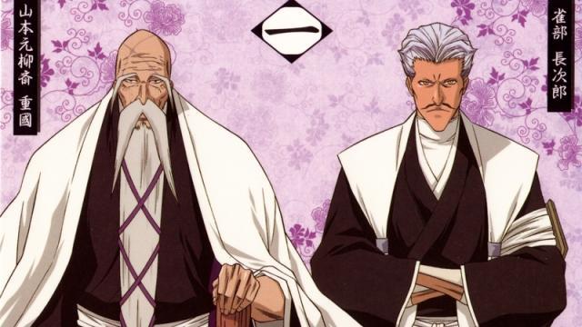 Informacion sobre Gotei 13 en la serie 'Bleach'