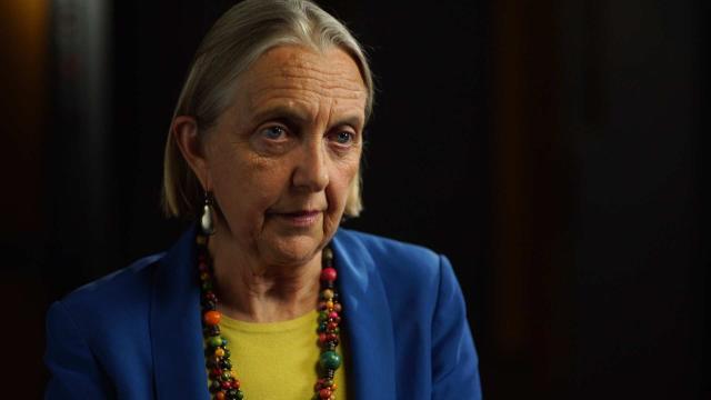 Verdes se opondrá al proyecto de ley de donación extranjera sobre las ventajas