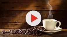 El Café, el mejor energizante natural y barato que puedes tomar