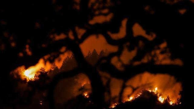 Hogares del sur de Australia perdidos en incendios forestales