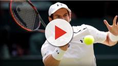 Andy Murray having hip surgery prompts retirement debate
