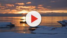 Muertes de botulismo de aves acuáticas en el lago Michigan