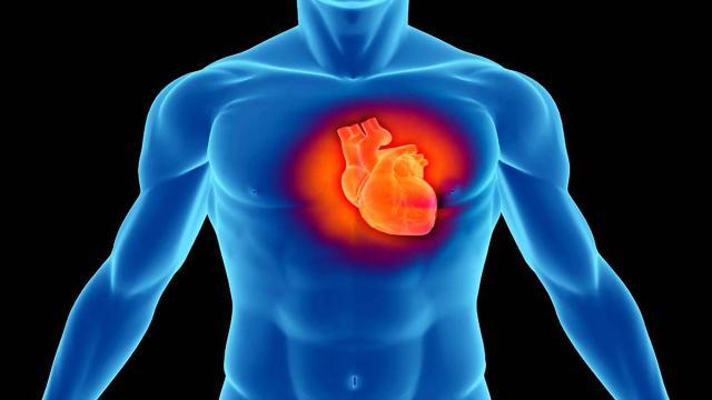 Video: Hai avuto un infarto? Rischi di perdere il lavoro