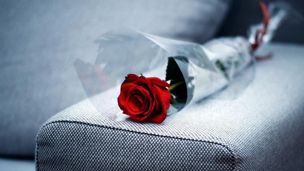 San Valentino è alle porte, e voi dove avete deciso di passare la giornata?