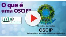 Vídeo: Os tipos de instituições sociais brasileiras.