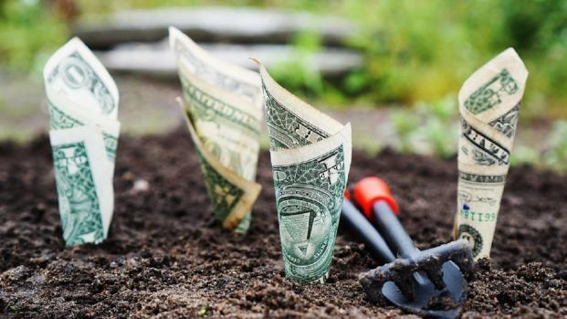 Il decreto legge 37 2017 abbatte i costi dei conti correnti