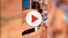 Vídeo: mulher joga cachorro no bueiro