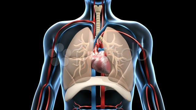 El virus de la gripe se puede propagar solo con la respiración