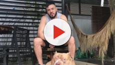 Assista: Belo cancela show depois de ser mordido por cão