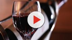 La morbidezza del vino rosso, alla scoperta dell'Ortense
