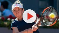 Open d'Australie : Cilic attend son adversaire, Halep et Wozniacki en finale