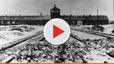 Campo di concentramento di Auschwitz, ecco come funzionava