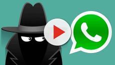 VIDEO: Espiar Whatsapp, tendencia en las redes sociales