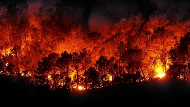 Tras los incendios forestales, California ahora se tambalea bajo deslizamientos