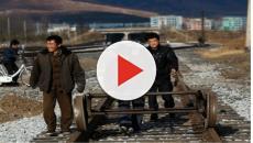 Moscú comenzará a deportar a los trabajadores norcoreanos para el próximo año